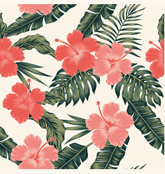 flowers hibiscus abstract color tropical leaves vector image