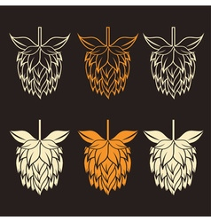 Hops design template vector image