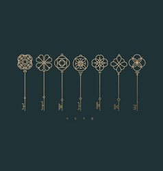 Modern graphic key collection green vector