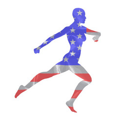 stars and stripes runner vector image