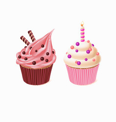 two cupcakes cakes for birthday vector image