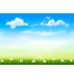 Summer nature background with green grass and sky vector image vector image