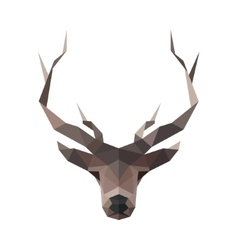 Deer low poly polygons horned vector image