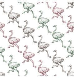 farm ostrich gradient seamless pattern vector image