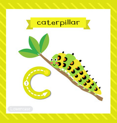 Letter c lowercase tracing caterpillar crawling vector