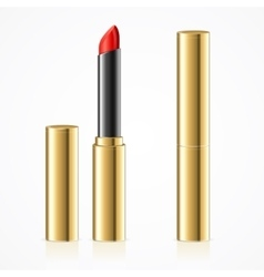 Red Lipstick in Gold Metal Tube Set vector image