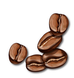 roasted coffee beans isolated on white background vector image