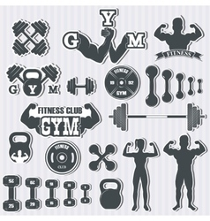 Fitness gym icons vector image vector image