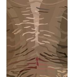Tiger skinstripes vector image vector image