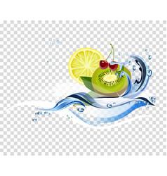 water fresh fruits vector image vector image