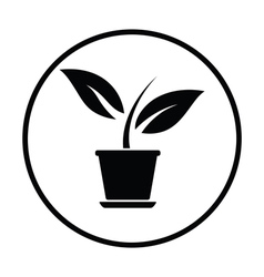 Plant in flower pot icon vector image vector image