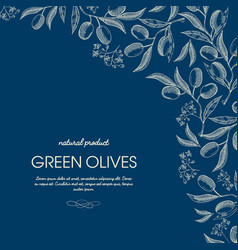 abstract olive oil template vector image