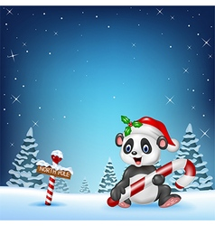 Cartoon funny panda sitting with a north pole vector image