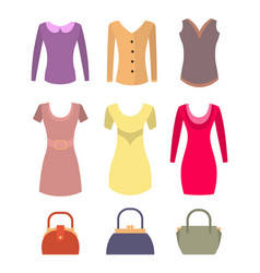 fashionable female clothes and accessories set vector image