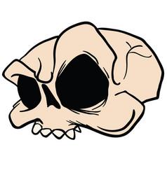 Skull5 vector