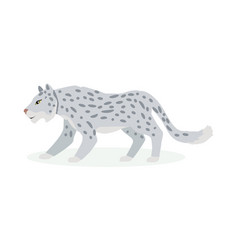 snow leopard cartoon flat vector image
