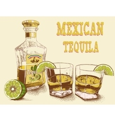 Two stemware of tequila with bottle vector