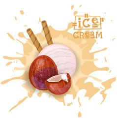 ice cream coconut ball dessert choose your taste vector image vector image