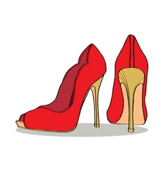 pair of womens shoes vector image