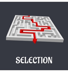 Labyrinth with the word Selection below vector image