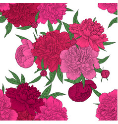 Beautiful seamless background pink peonies vector
