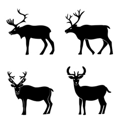 Deer collection vector image