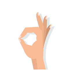 hand sign ok vector image