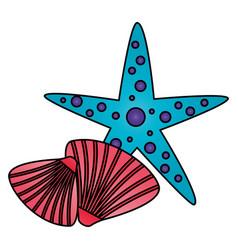 starfish seashell wildlife on white background vector image