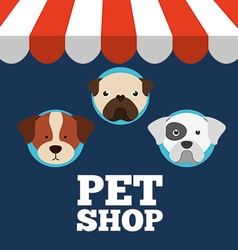 veterinary centre design vector image