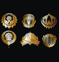 luxury logo set of flowers vector image