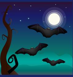 a bat under vector image