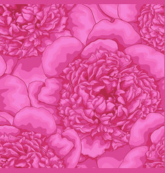 beautiful seamless background pink peonies vector image