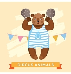 Circus Bear animal series vector