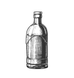 Closed standard drink tequila glass bottle vector