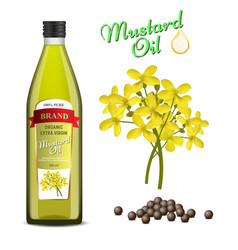 Mustard oil set realistic vector