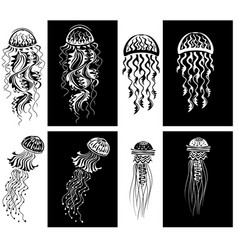 set decorated jellyfishes black and white vector image