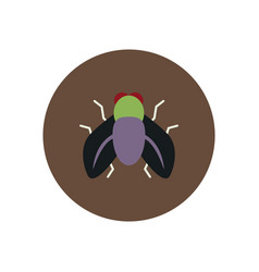 Stylish icon in color circle fly insect vector