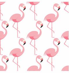 flamingo seamless pattern pink flamingo standing vector image vector image