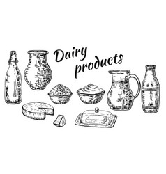ink hand drawn sketch style dairy products vector image