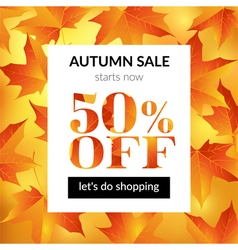 Autumn sale background with maple leaves vector image