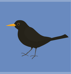 Blackbird vector