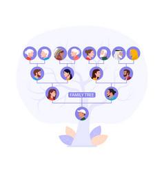 Family history tree 2 vector