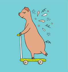 Hand-drawn pig riding on a scooter vector