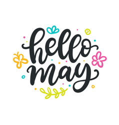 Hello may spring modern calligraphy quote vector
