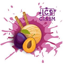 Ice cream plum ball fruit dessert choose your vector