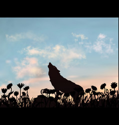 silhouette wolf howling at evening sunset vector image