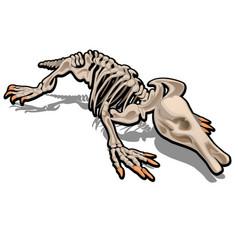Skeleton anteater isolated on white background vector