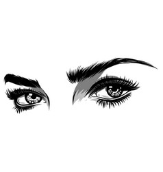 Beautiful women eyes with make vector