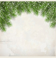 fir tree on plaster wall background vector image