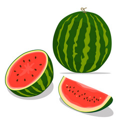 Logo for whole ripe red fruit vector